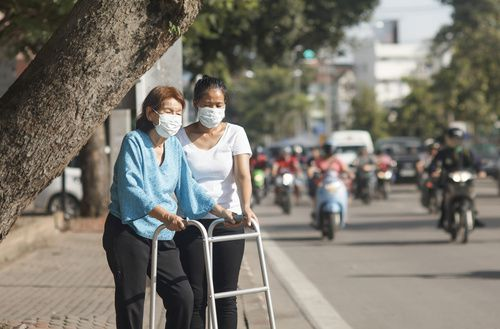 Alzheimer, Parkinson : le rôle de la pollution de l'air