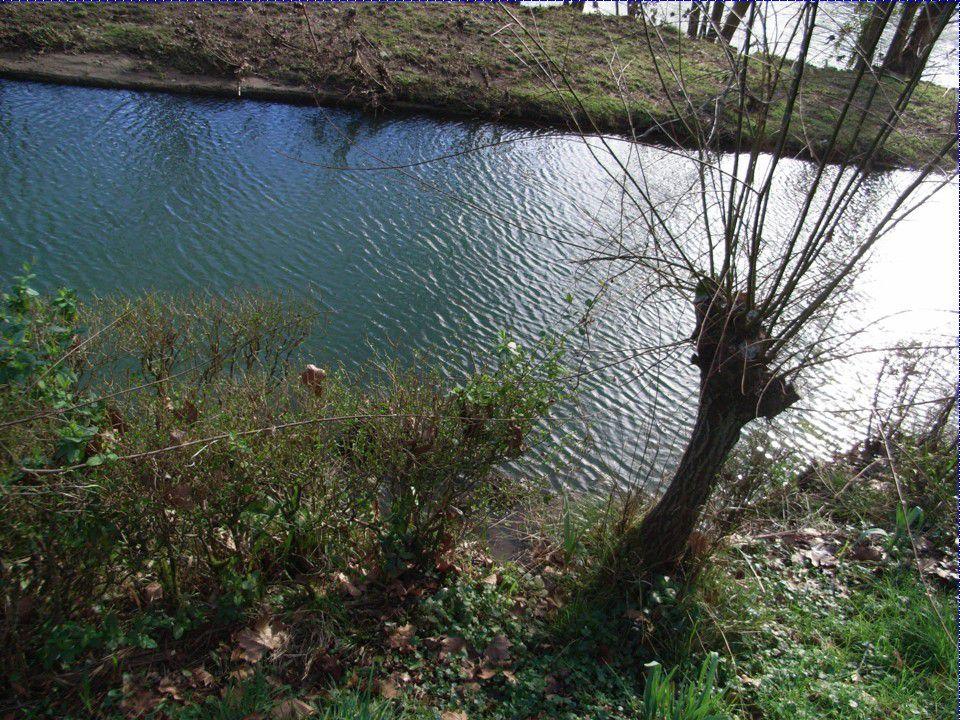Ustaritz: Sauvons le canal du bourg, c'est notre patrimoine