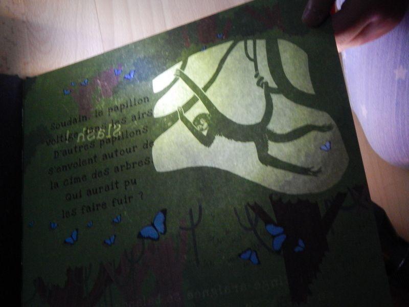 [ Chut ... les enfants lisent ! ] Les secrets de la forêt tropicale