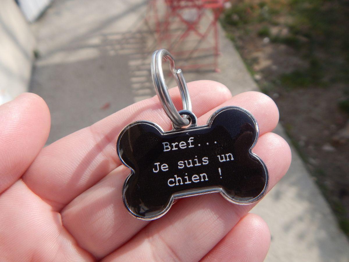[ le-coin-des-animaux.fr ] Une médaille qui a du chien