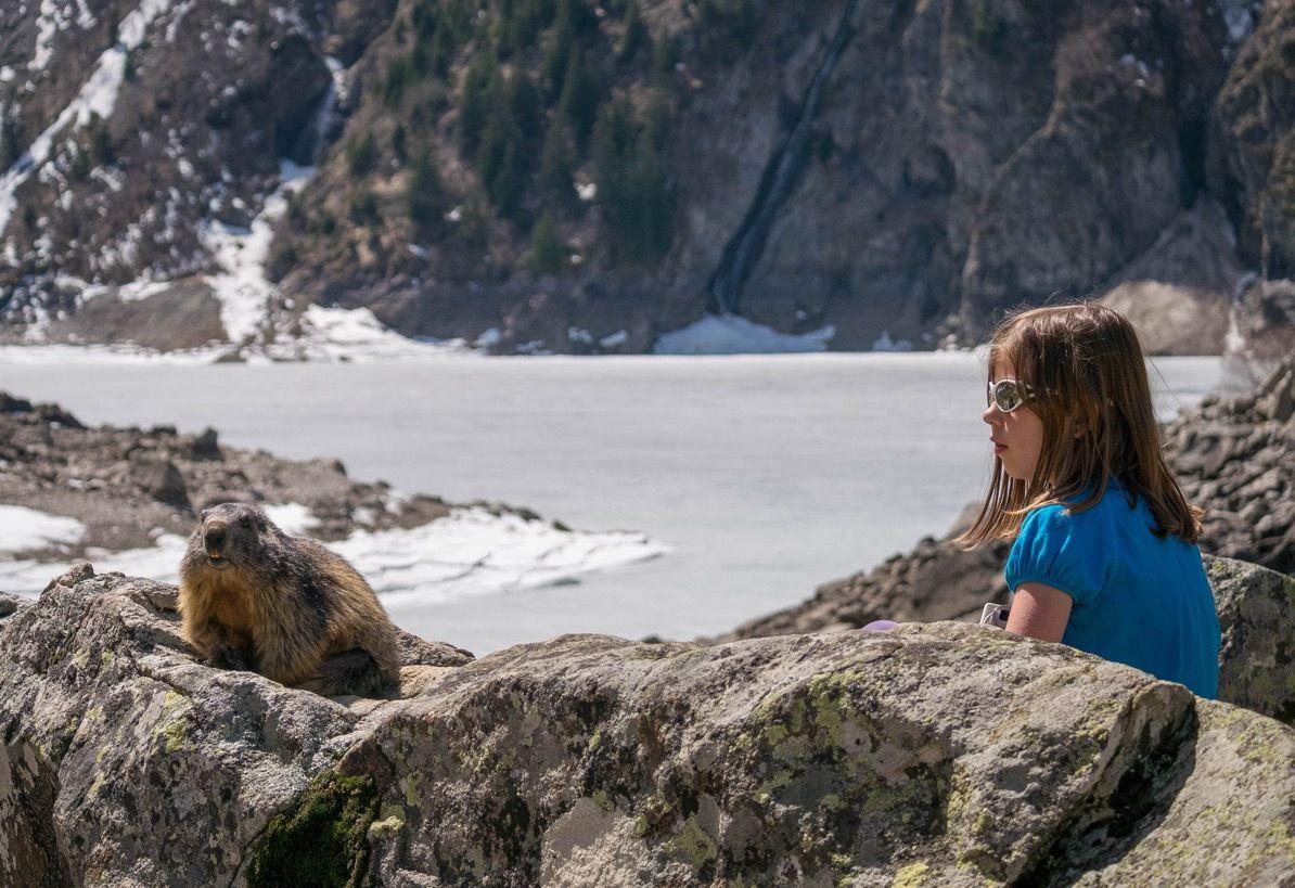La marmotte, le lac et l'enfant