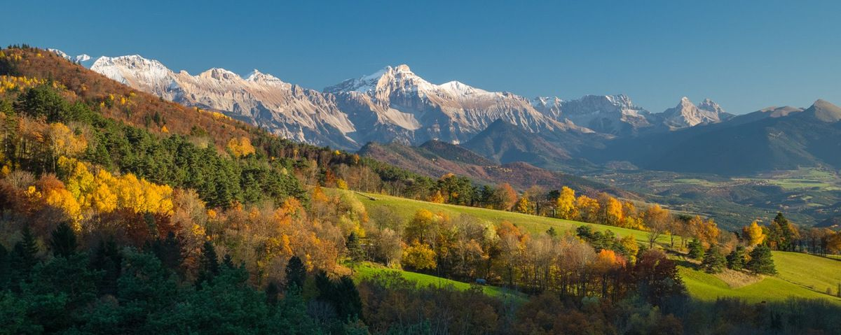 Encore quelques belles palettes dans le Trièves, plus au sud (800 m d'altitude ici)