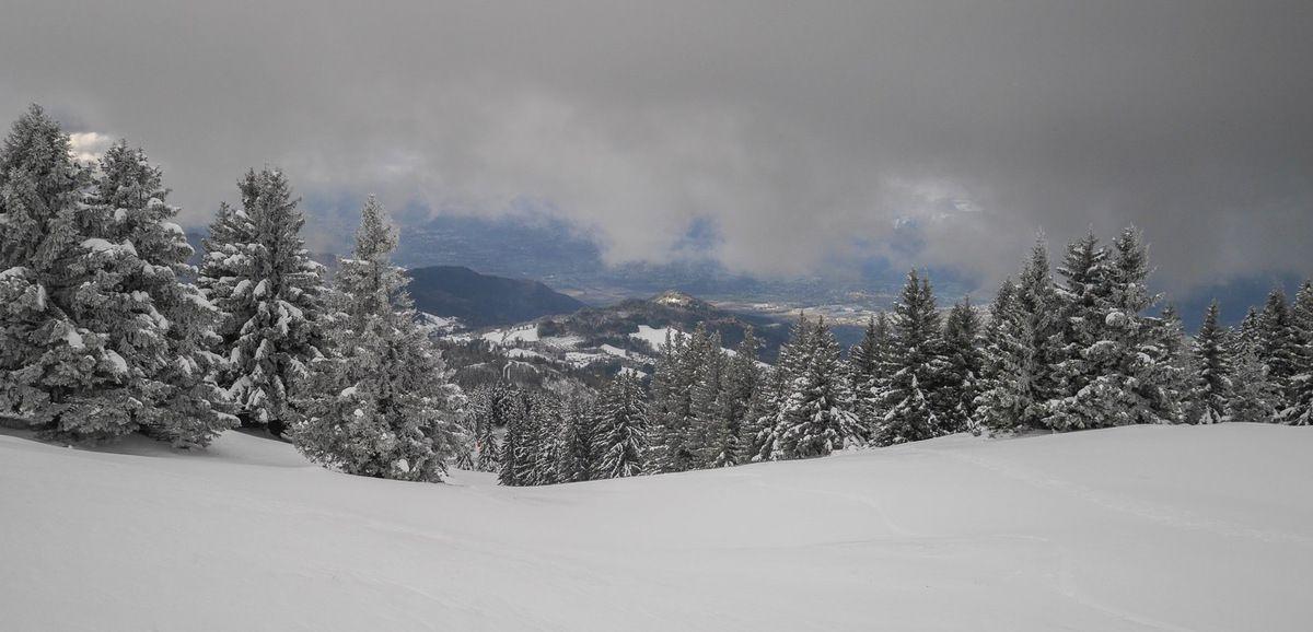 Une bonne visibilité au bas des pistes, mais uniquement sous 2000 m. Au-dessus, il faut saisir les bonne opportunités pour descendre ou alors accepter le jour blanc.