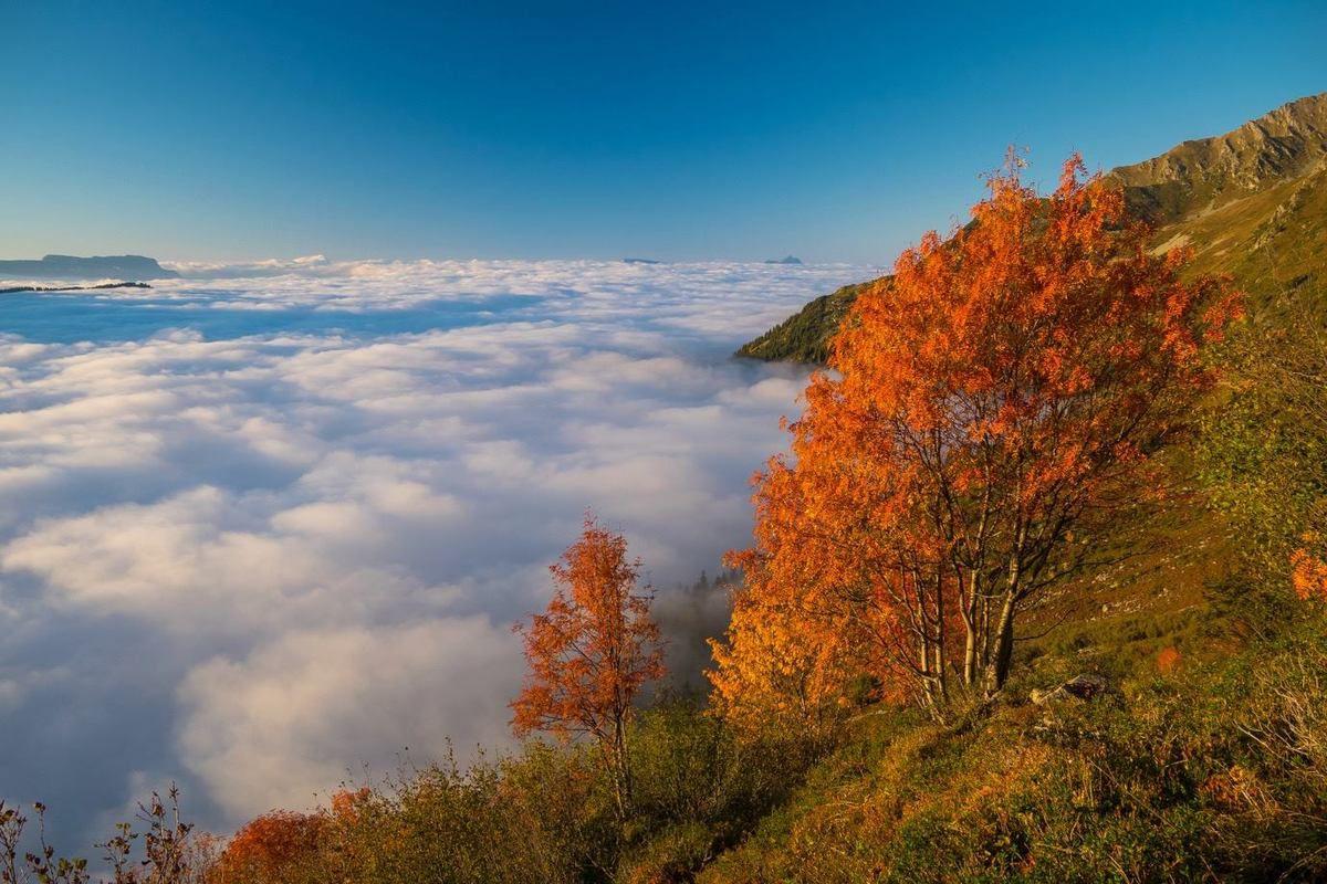 Fin de journée d'automne dans la Grande Valloire