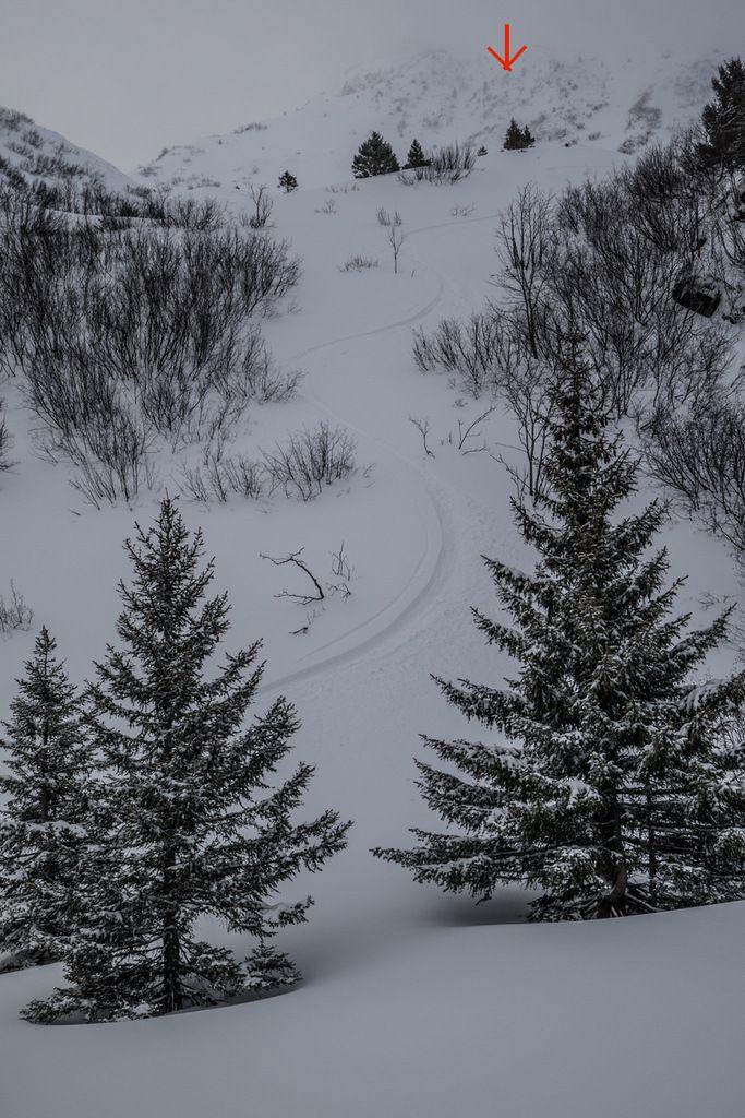 Versant nord. Des vernes mais des trouées parfaites. La flèche rouge indique le couloir nord de la Sitre qui sera skié une heure trente plus tard