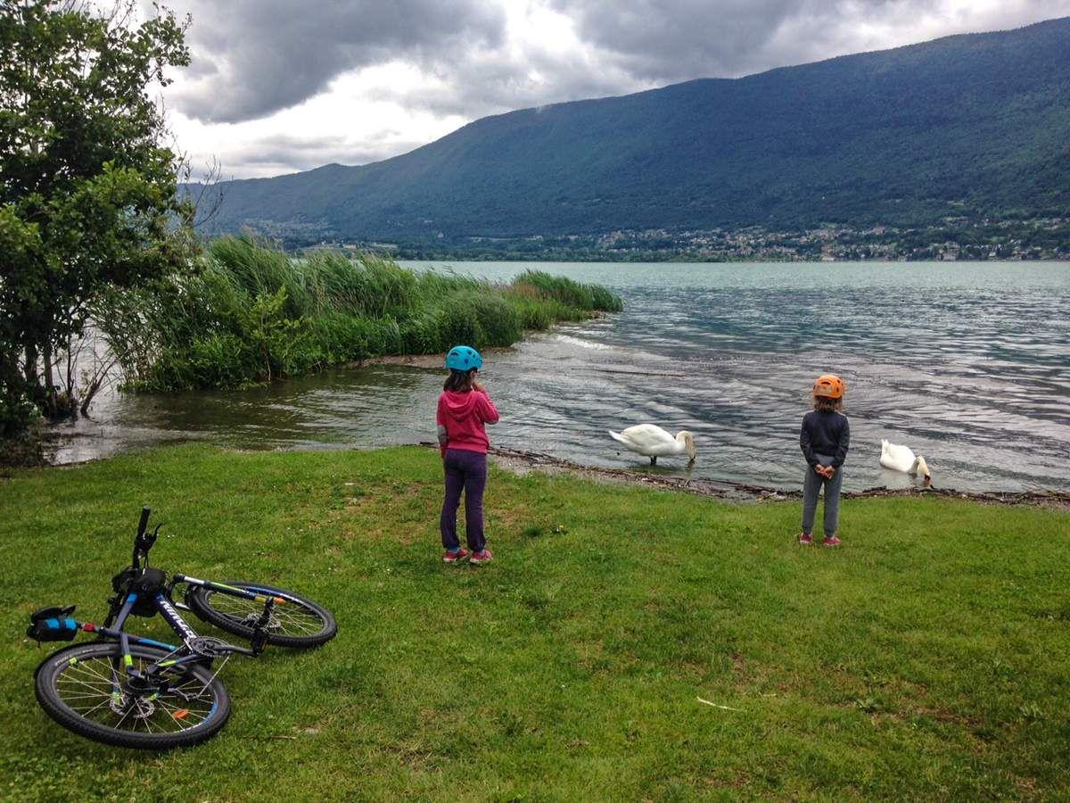 Arrêt le long du lac du Bourget
