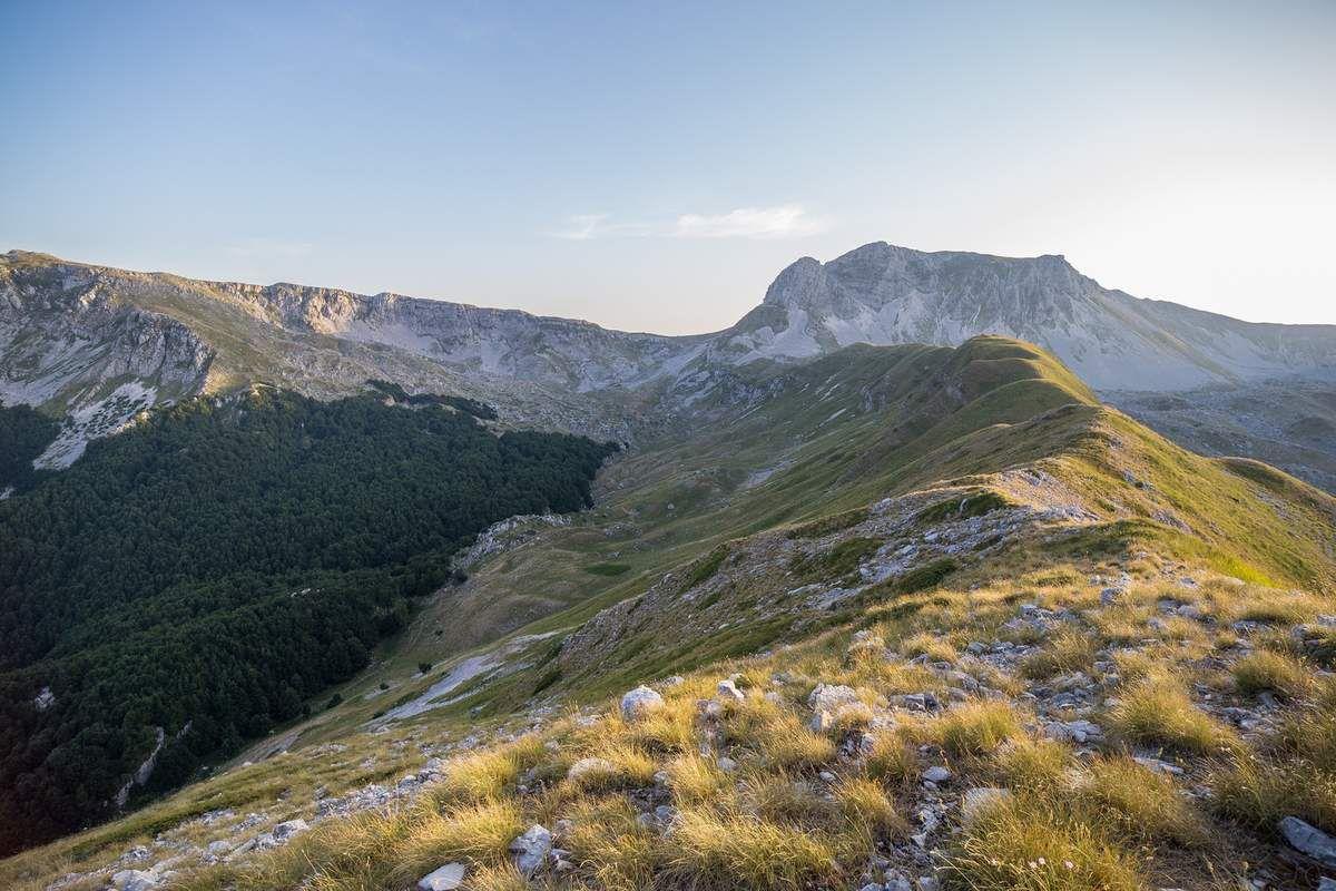 Sommet de monte Miele lors d'un affût infructueux près d'une carcasse. Fin de journée et vue sur la Meta, le point culminant des lieux