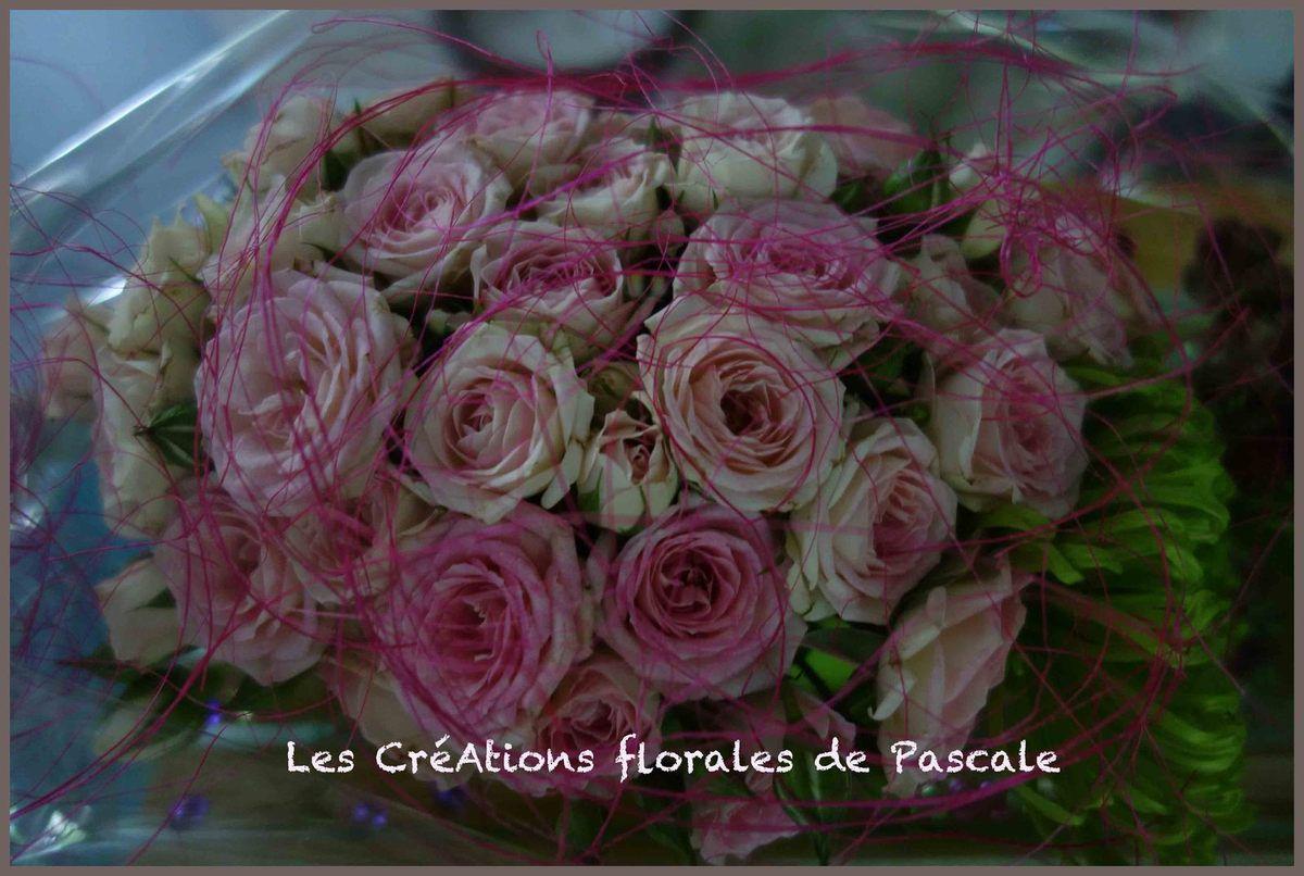 Mini roses Eden