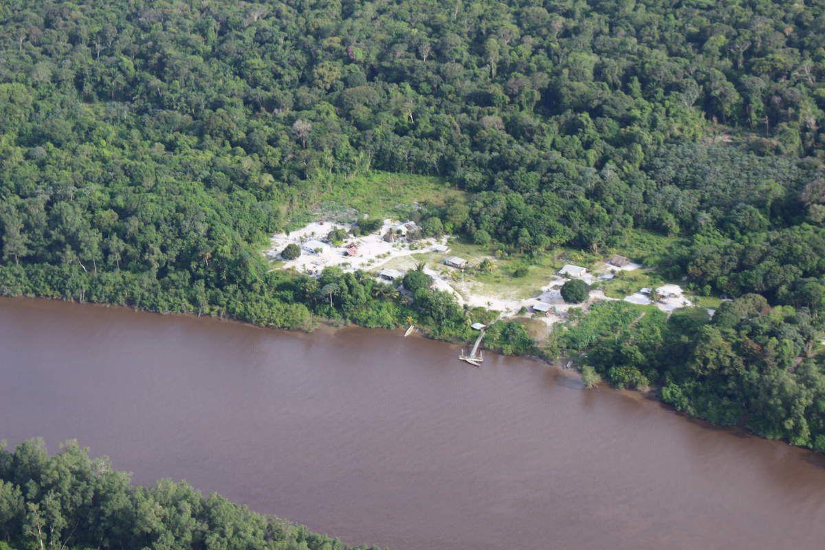 Des photos de cours d'eau qui traversent la forêt amazonienne, omniprésente puisqu'elle couvre 95 %  de la Guyane.