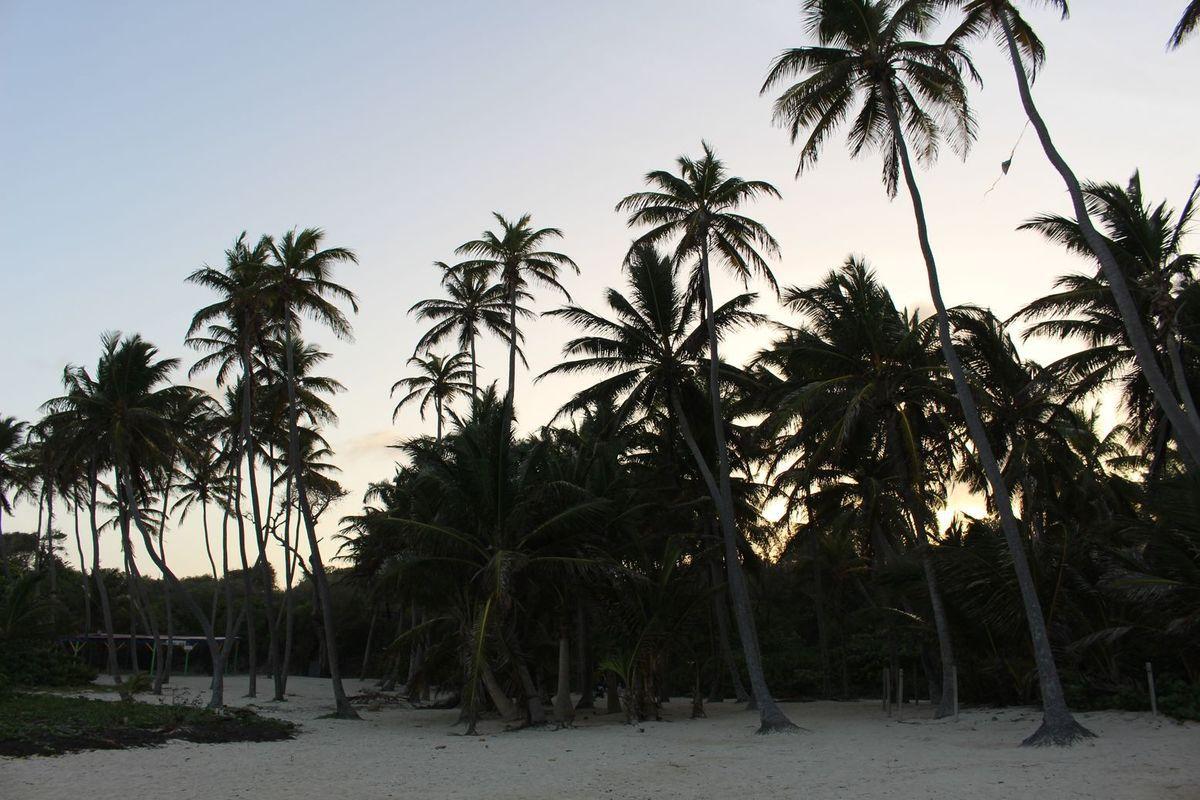 Voyage en Martinique - 2016 - Plages de la pointe Sud
