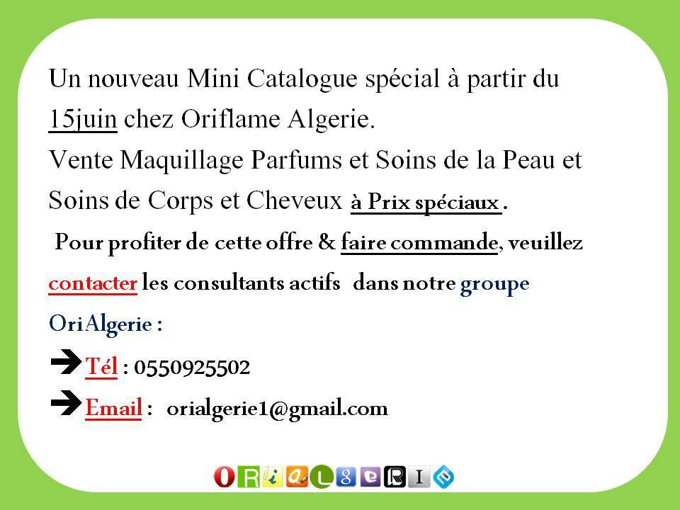 ORIFLAME Mini Catalogue
