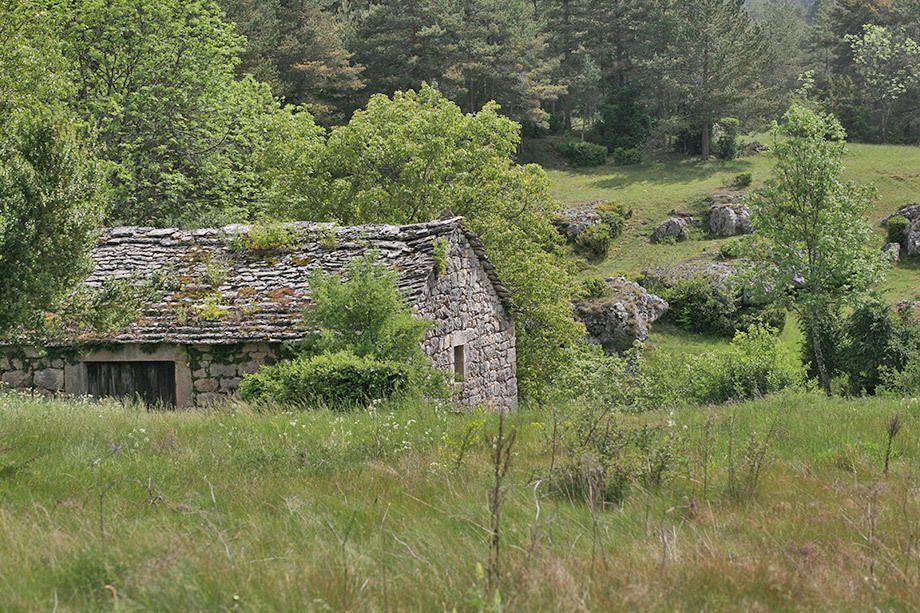 Ferme abandonnée dans le massif central pouvant TRÉS facilement être transformée en point d'appui fortifié
