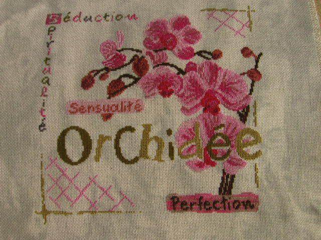Sal LLP Orchidée # 10