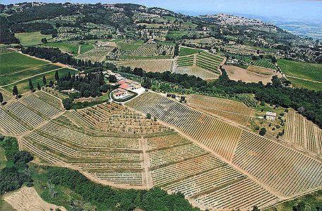 Vous avez bu quel vin hier soir ? Moi, un brunello di Montalcino de Biondi-Santi !