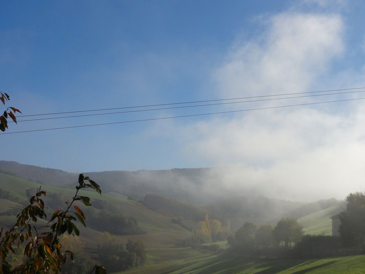 Dissipation du brouillard matinal