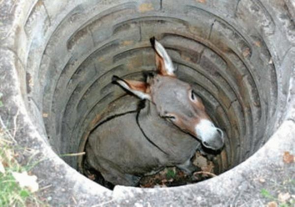 dimension symbolique donc inconsciente du conte de l'âne au fond du puits par Elisabeth Rouzier