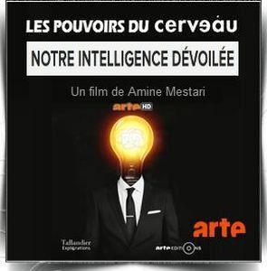 Le pouvoir du cerveau, documentaire volet 2 : notre intelligence dévoilée