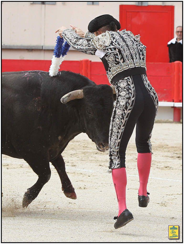 Eugenio de Mora signa quelques véroniques volontaires au toro d'ouverture qui poussa correctement lors de la première rencontre et vint ensuite de loin pour une seconde ration de fer pompée. Bien doublé par le bas en début de faena, l'animal fut principalement lidié sur sa bonne corne gauche, la droite s'avérant plus accrocheuse, mais ne se livra jamais vraiment. Le torero de Toledo conclut son trasteo par une entière latérale un peu tendida et se retira en silence.