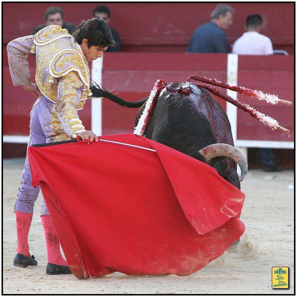 Le sixième fit une vuelta de campana après les véroniques d'accueil, poussa un peu sur la première pique dont il sortit en chutant, puis revint au cheval pour une seconde courte ration. L'animal humilia fort bien dans la muleta mais ne s'y livra pas, retenant ses charges et cabécéant sur la gauche. Sébastien essaya sur les deux bords, courut la main en début de faena mais le trasteo tourna court du fait du manque de fond de l'animal. Demi-lame après trois pinchazos. Silence.