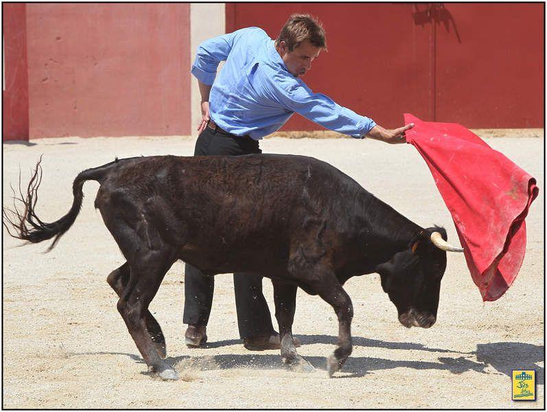 Juan Bautista prit ensuite le relais avec une vache de Valverde plus complète mais davantage exigeante, et il a fallu toute la technique et la maestría de l'Arlésien pour lui imposer un dominio qui lui a ensuite permis de davantage se relâcher afin d'exécuter des séries relevées.