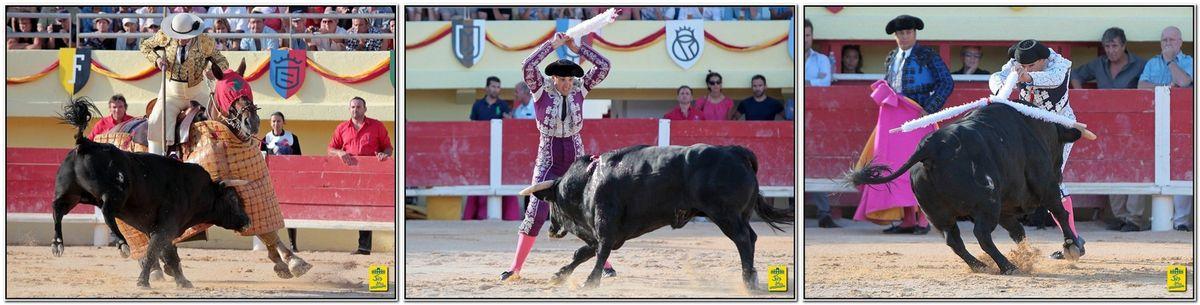 Sébastien Castella ne peut rien tirer de son premier adversaire sans race et terriblement faible. Quelques muletazo et le Biterrois se débarrasse rapidement de cet adversaire ne lui laissant aucune option.