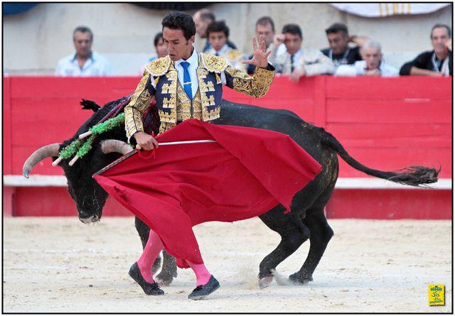 ... NÎMES FERIA DES VENDANGES 2015 ... 17 SEPTEMBRE ... NOVILLADA DE LOS CHOSPES ... UNE TARDE SANS TROPHÉES ...