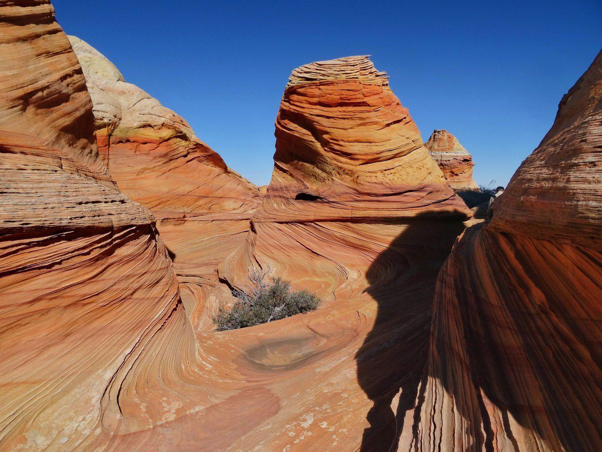 FEVRIER 2016 : JOUR 7 / SOUTH COYOTE BUTTES