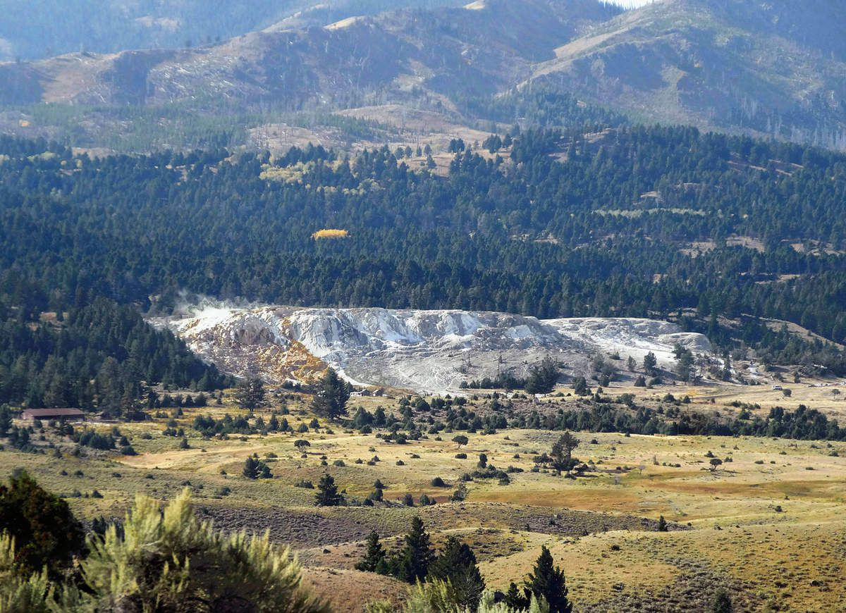 Yellowstone Mammoth Hot Springs Terraces
