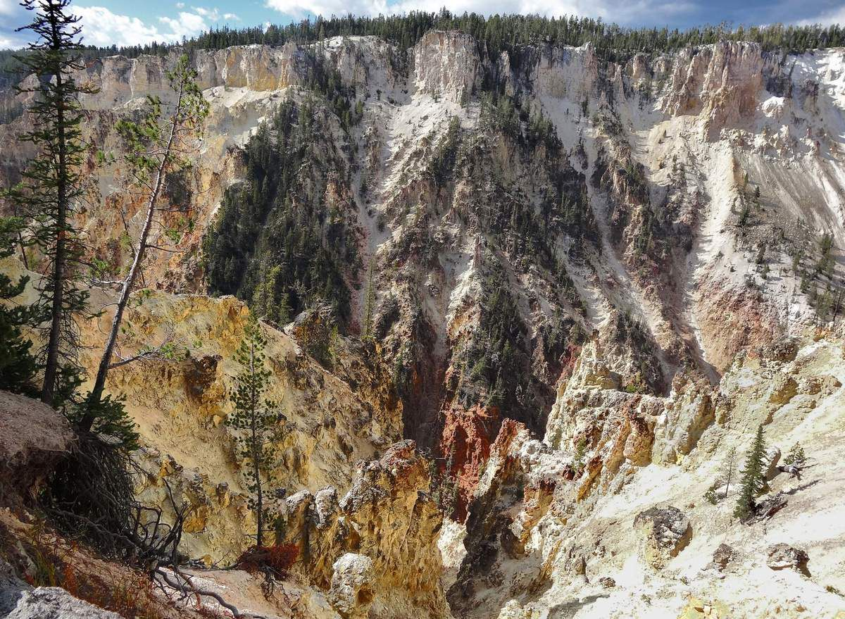 Yellowstone Canyon Artist Point