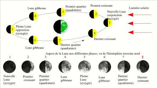 La Lune n'a pas toujours la même forme car elle tourne autour de la Terre en 28 jours.