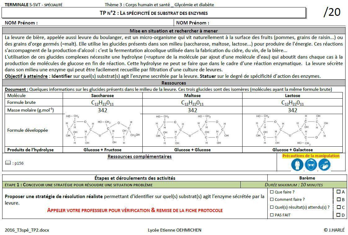 TP2_spé : La spécificité de substrat des enzymes