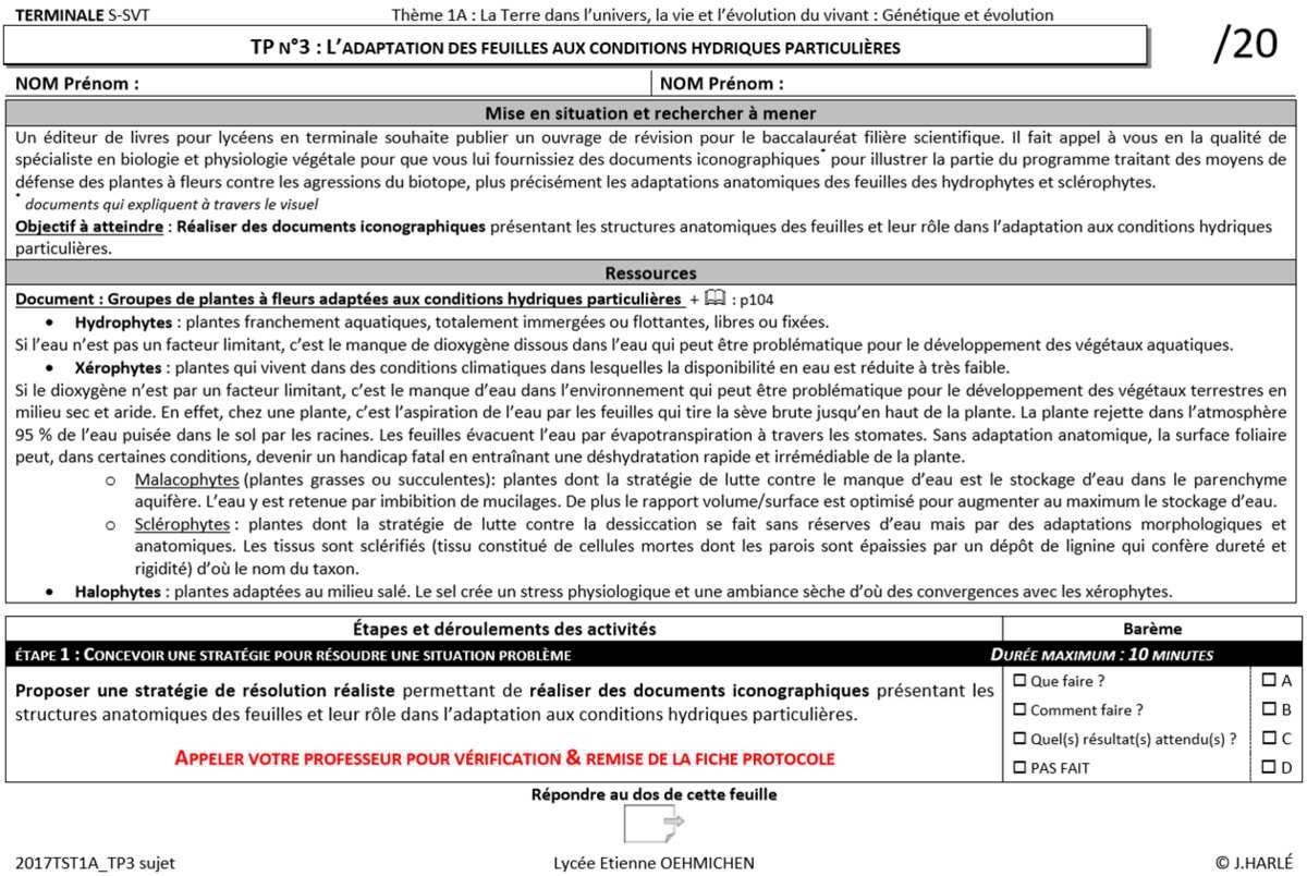 TS_TP3 : L'adaptation des feuilles aux conditions hydriques particulières
