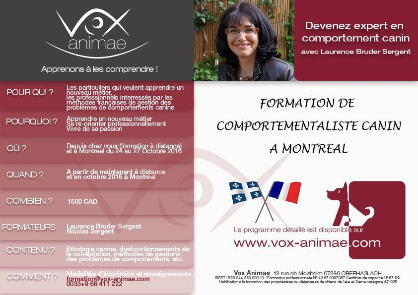 Formation Comportementaliste Canin