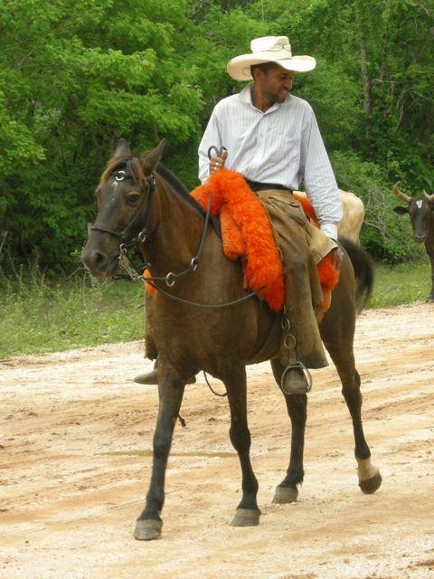 Les tapis colorés en orange vif sont très appréciés.