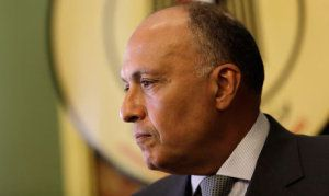 Egyptian Foreign Minister Sameh Shoukry during a joint press conference at the Egyptian foreign ministry in Cairo, Egypt, Thursday, July 24, 2014 (AP)