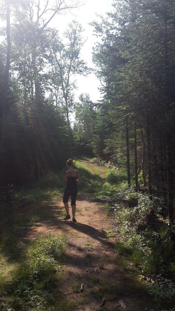Canada : Celui qui randonnait dans le Parc de la Mauricie