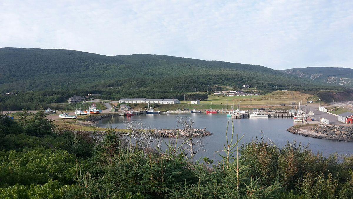 Canada : Celui qui randonnait sur l'île du Cap-Breton