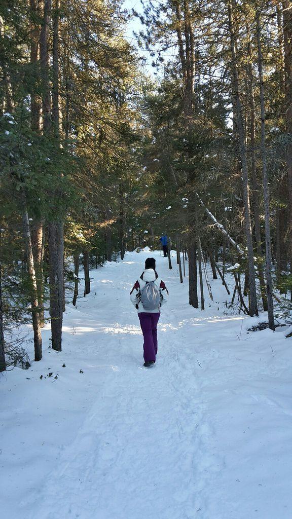 Canada : Celui qui passait les fêtes de fin d'année au Québec