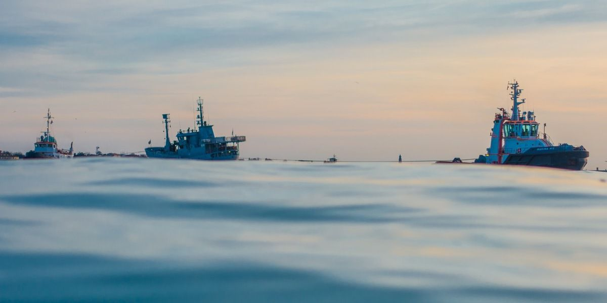 SEA SHEPARD dans la Lagune de Venise