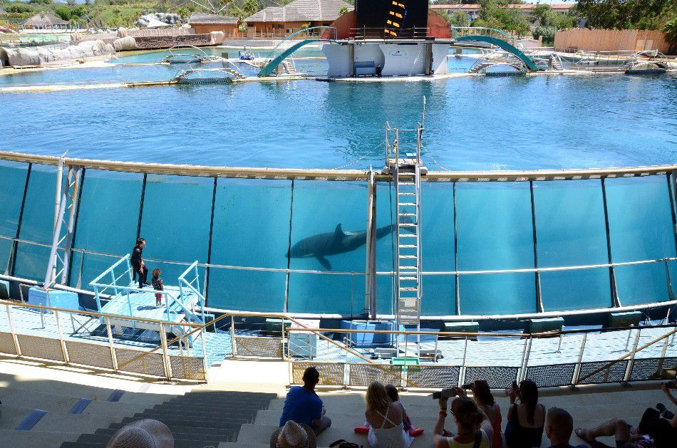 LA BONNE INITIATIVE DE MARINELAND