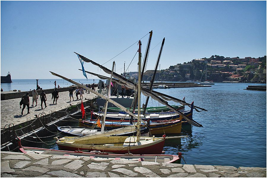 Collioure - barques catalanes