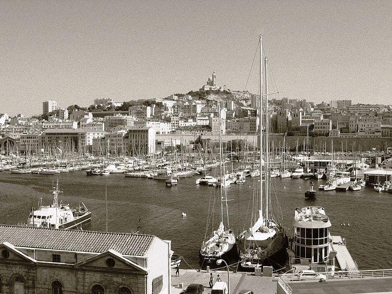 Les pigeons du Vieux Port...