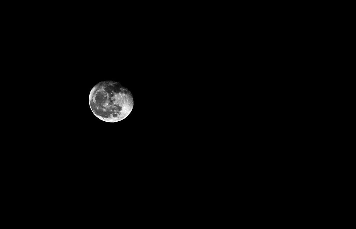 Le monde est une ampoule suspendue dans le noir...
