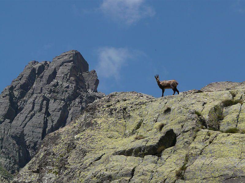 La Vallée des Merveilles : un monde intact et mystérieux...