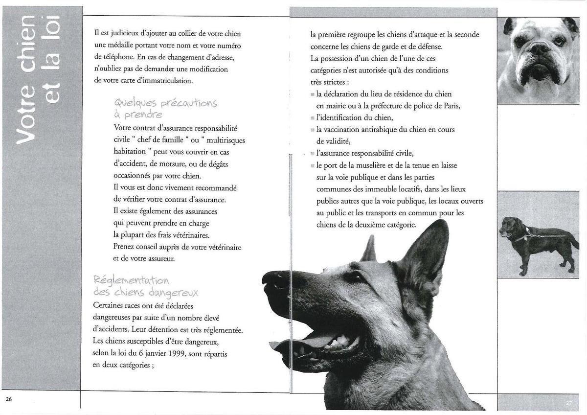 Votre chien et la loi