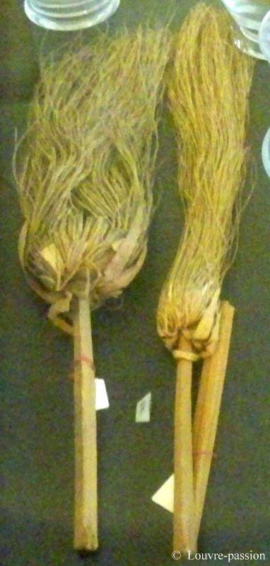 Ombelles de papyrus (n° 18)