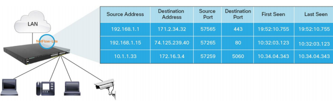 Output from Cisco NetFlow-Lite