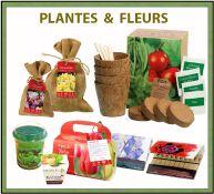 Collection de plantes et fleurs pour votre publicité