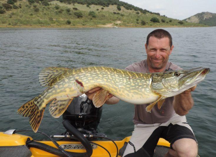 Une 50 aine de poissons de 80 à 107cm ont été capturés, au point d'en photographier que certains.