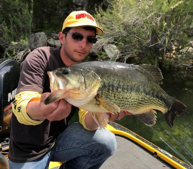 Les poissons de 50 à 55cm sont courants et se touchent sans problème en pêchant le brochet